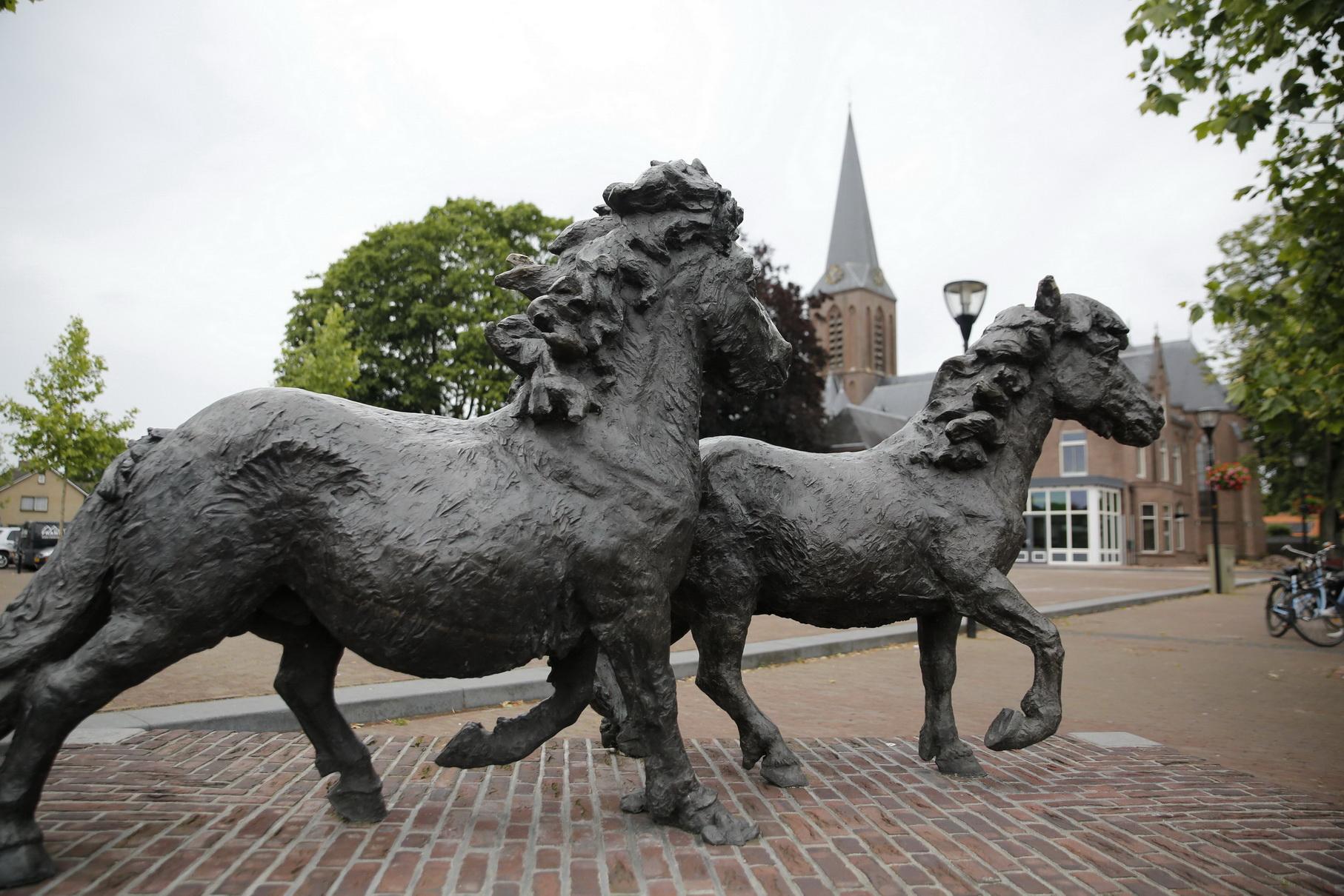 Pony's en kerk plein Heeten